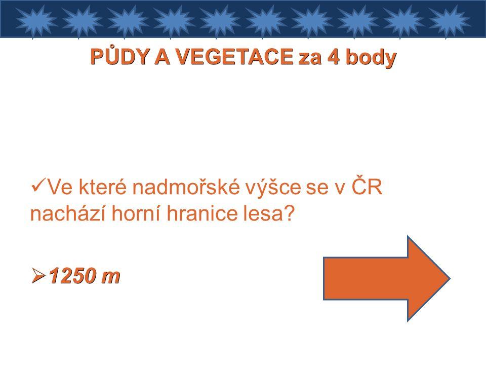 PŮDY A VEGETACE za 4 body Ve které nadmořské výšce se v ČR nachází horní hranice lesa  1250 m