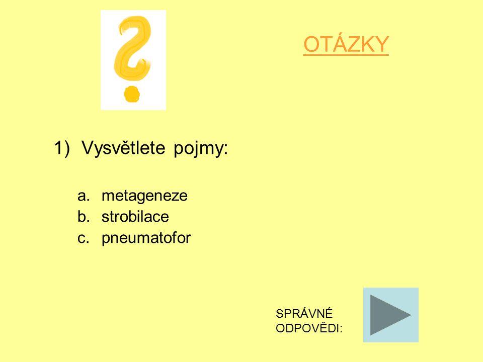 OTÁZKY 1)Vysvětlete pojmy: a.metageneze b.strobilace c.pneumatofor SPRÁVNÉ ODPOVĚDI: