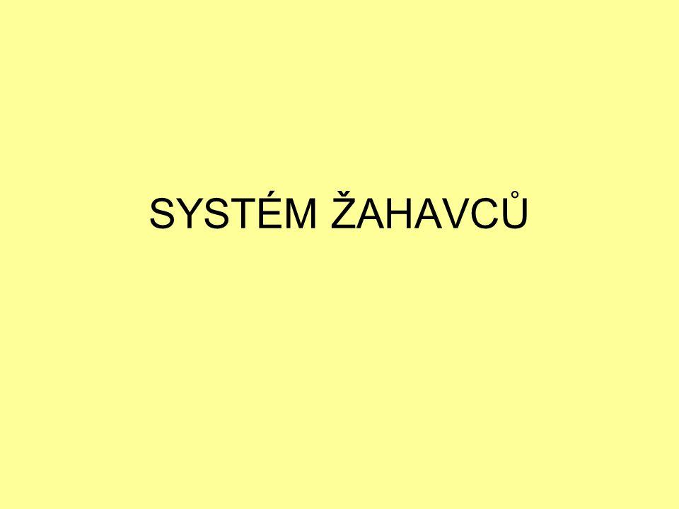 kmen: ŽAHAVCI (Cnidaria) 4 třídy: -MEDÚZOVCI (Sciphozoa) -ČTYŘHRANKY (Cubozoa) -POLYPOVCI (Hydrozoa) -KORÁLNATCI (Anthozoa)