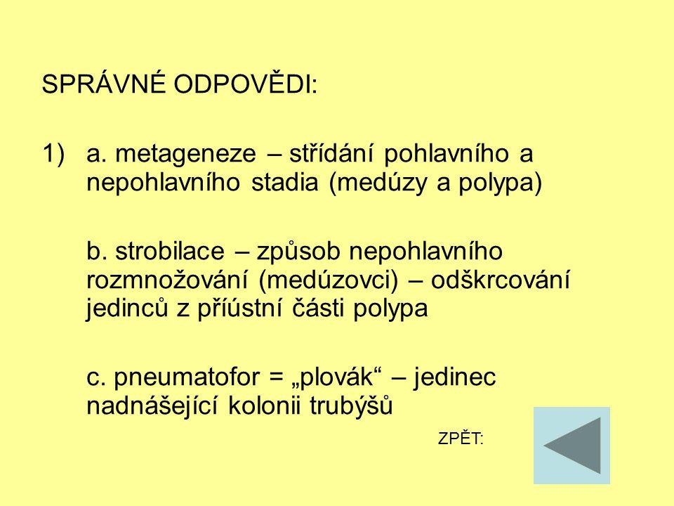SPRÁVNÉ ODPOVĚDI: 1)a. metageneze – střídání pohlavního a nepohlavního stadia (medúzy a polypa) b.