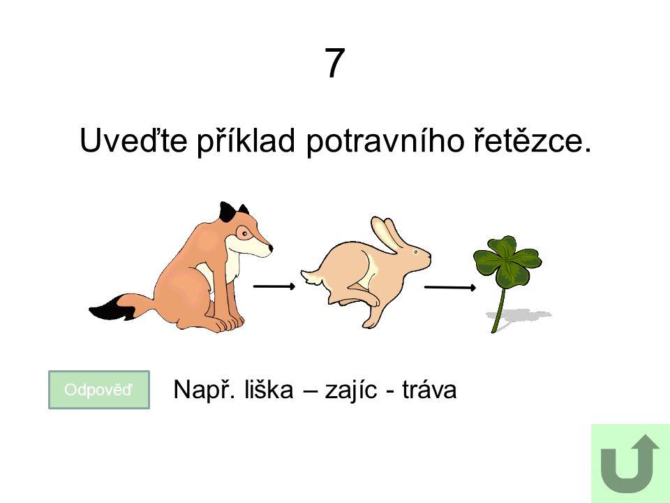 7 Uveďte příklad potravního řetězce. Odpověď Např. liška – zajíc - tráva