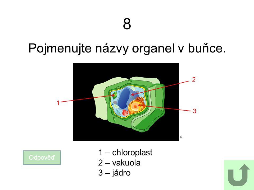 8 Pojmenujte názvy organel v buňce. Odpověď 1 – chloroplast 2 – vakuola 3 – jádro 1 2 3 4.