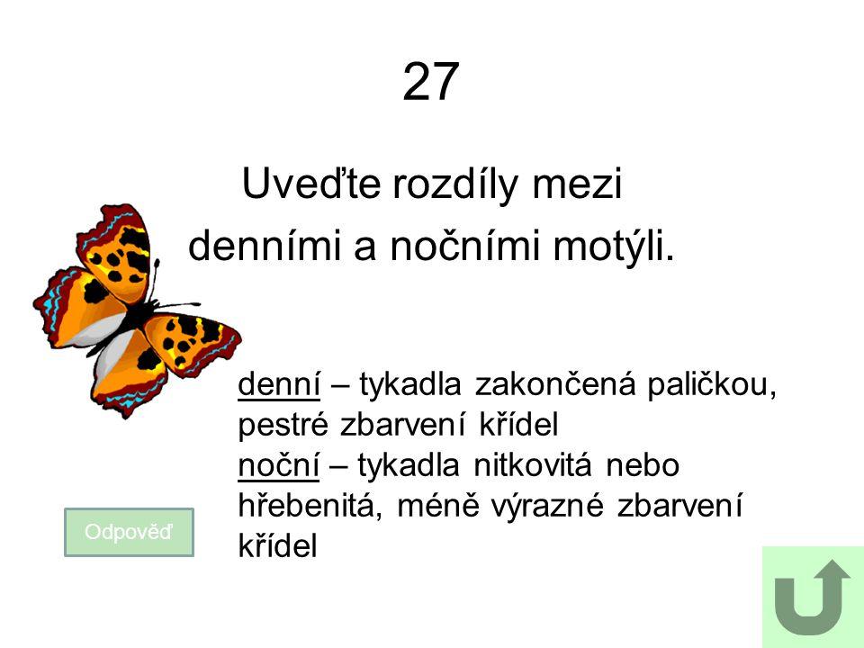 2727 Uveďte rozdíly mezi denními a nočními motýli. Odpověď denní – tykadla zakončená paličkou, pestré zbarvení křídel noční – tykadla nitkovitá nebo h