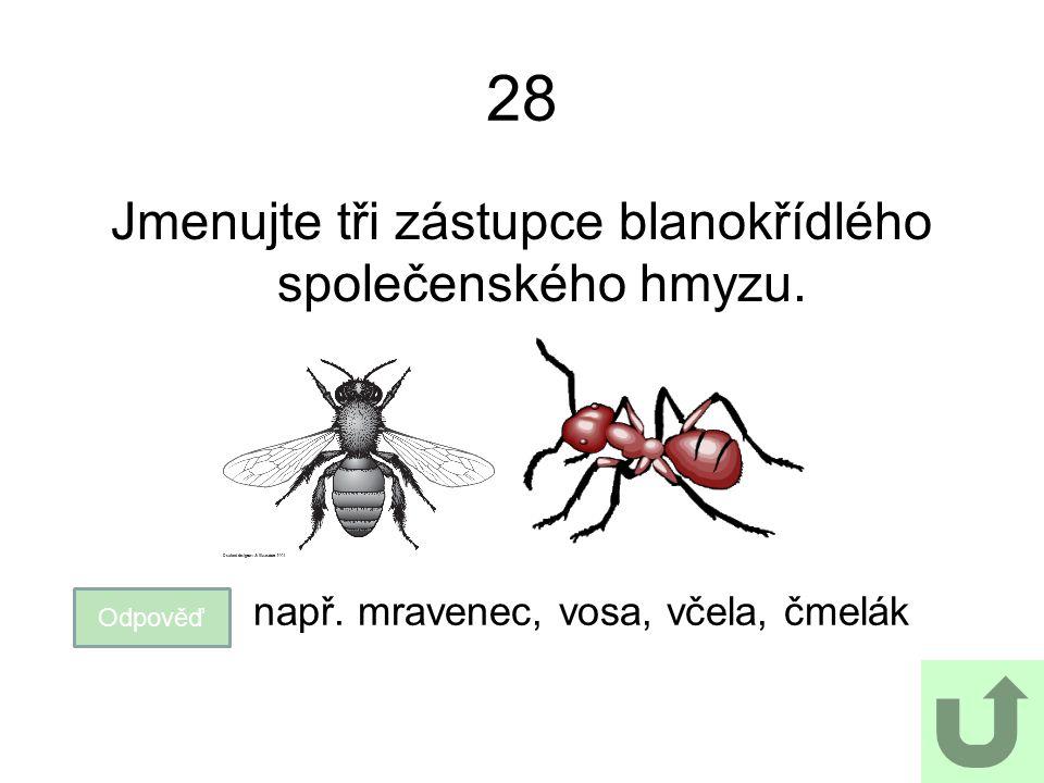 28 Jmenujte tři zástupce blanokřídlého společenského hmyzu. Odpověď např. mravenec, vosa, včela, čmelák