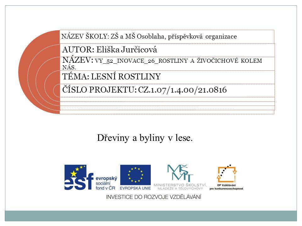 Datum vytvoření projektu 2012 Ročník7.