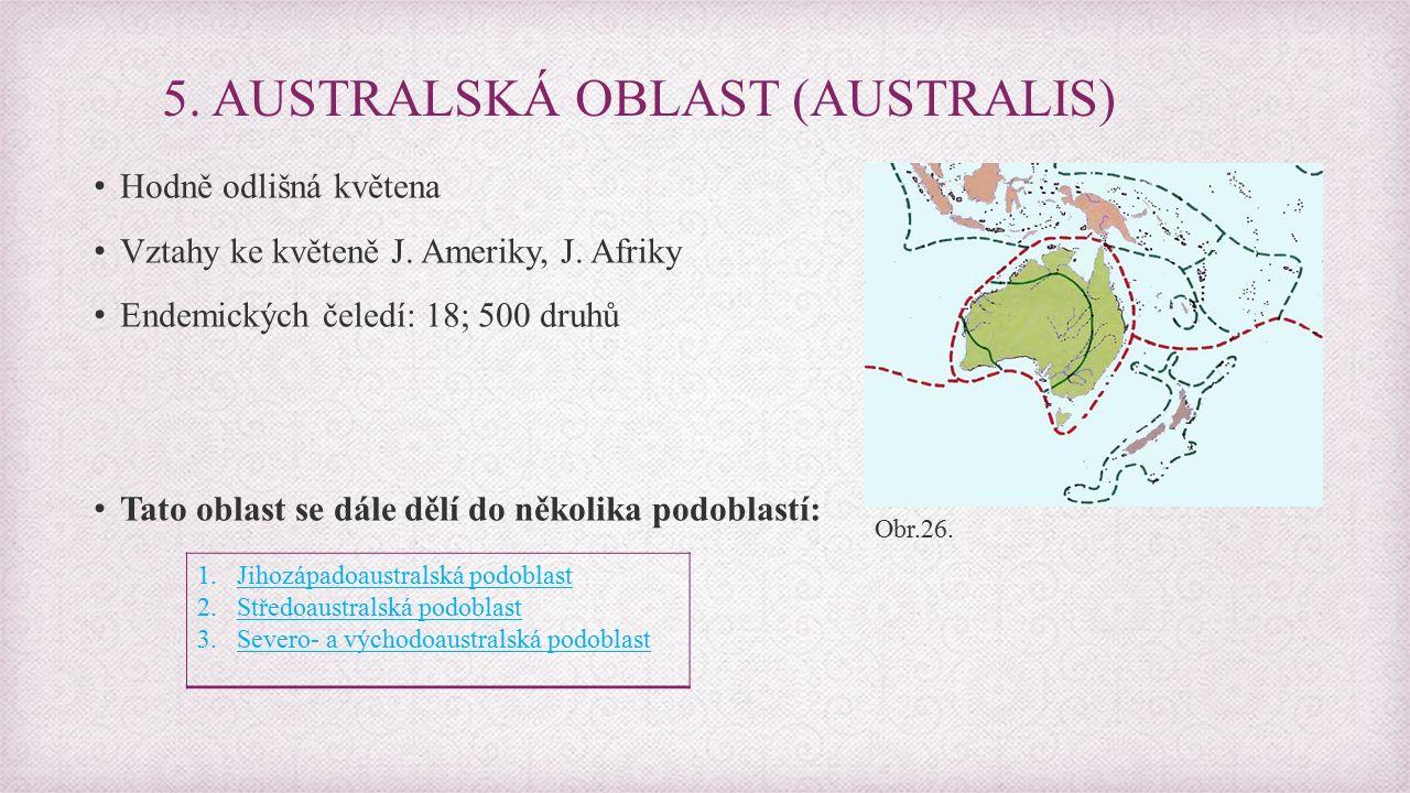 5.AUSTRALSKÁ OBLAST (AUSTRALIS) Hodně odlišná květena Vztahy ke květeně J.