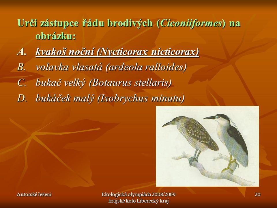 Autorské řešeníEkologická olympiáda 2008/2009 krajské kolo Liberecký kraj 20 Urči zástupce řádu brodivých (Ciconiiformes) na obrázku: A.kvakoš noční (Nycticorax nicticorax) B.volavka vlasatá (ardeola ralloides) C.bukač velký (Botaurus stellaris) D.bukáček malý (Ixobrychus minutu)