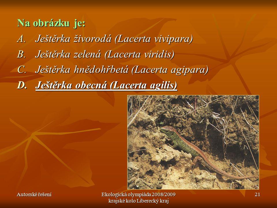 Autorské řešeníEkologická olympiáda 2008/2009 krajské kolo Liberecký kraj 21 Na obrázku je: A.Ještěrka živorodá (Lacerta vivipara) B.Ještěrka zelená (Lacerta viridis) C.Ještěrka hnědohřbetá (Lacerta agipara) D.Ještěrka obecná (Lacerta agilis)