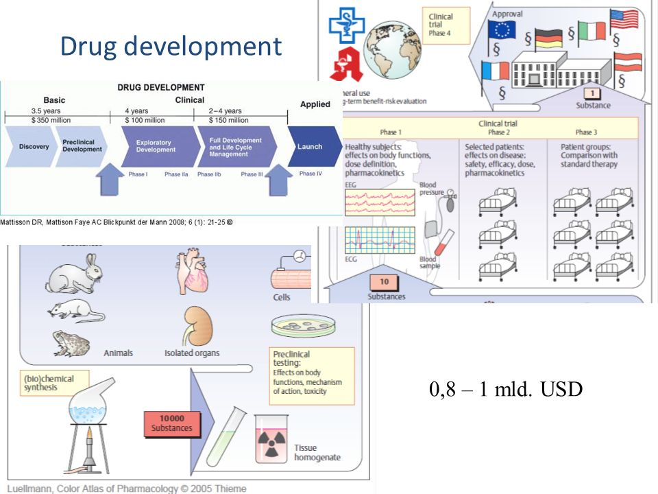 Drug development 0,8 – 1 mld. USD
