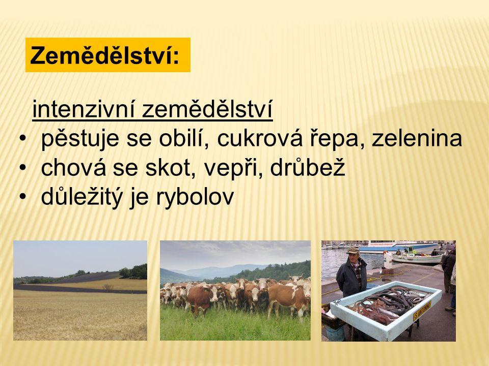 Zemědělství: intenzivní zemědělství pěstuje se obilí, cukrová řepa, zelenina chová se skot, vepři, drůbež důležitý je rybolov