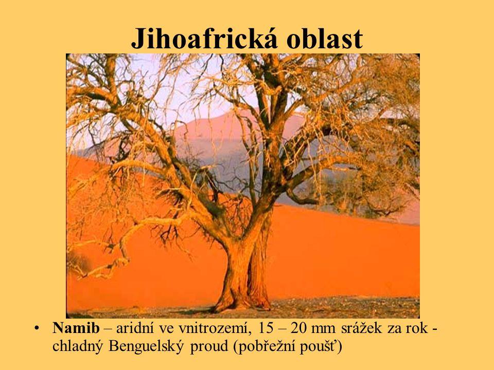 Jihoafrická oblast Namib – aridní ve vnitrozemí, 15 – 20 mm srážek za rok - chladný Benguelský proud (pobřežní poušť)