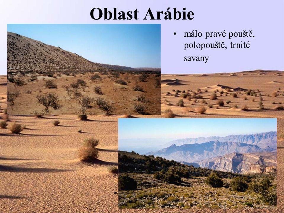 Oblast Arábie málo pravé pouště, polopouště, trnité savany