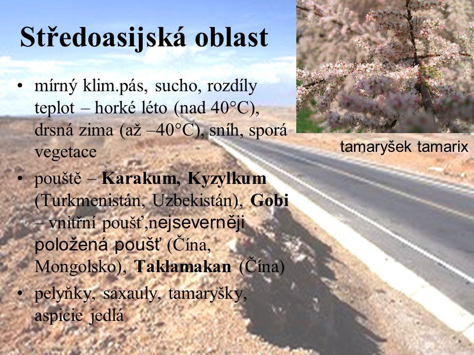 Středoasijská oblast mírný klim.pás, sucho, rozdíly teplot – horké léto (nad 40°C), drsná zima (až –40°C), sníh, sporá vegetace pouště – Karakum, Kyzylkum (Turkmenistán, Uzbekistán), Gobi – vnitřní poušť,n ejseverněji položená poušť (Čína, Mongolsko), Taklamakan (Čína) pelyňky, saxauly, tamaryšky, aspicie jedlá tamaryšek tamarix