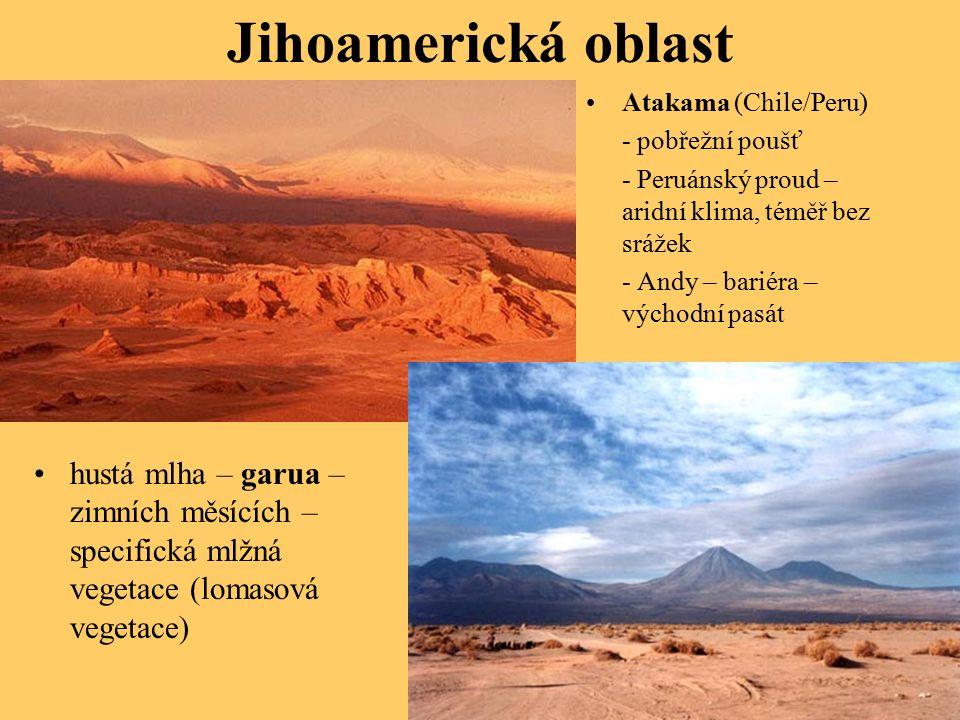 Jihoamerická oblast hustá mlha – garua – zimních měsících – specifická mlžná vegetace (lomasová vegetace) Atakama (Chile/Peru) - pobřežní poušť - Peruánský proud – aridní klima, téměř bez srážek - Andy – bariéra – východní pasát
