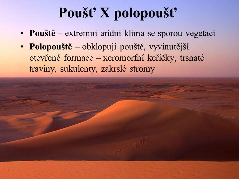 Poušť X polopoušť Pouště – extrémní aridní klima se sporou vegetací Polopouště – obklopují pouště, vyvinutější otevřené formace – xeromorfní keříčky, trsnaté traviny, sukulenty, zakrslé stromy