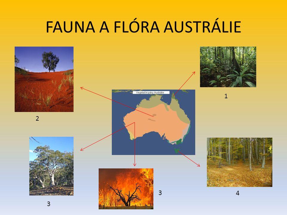 FAUNA A FLÓRA AUSTRÁLIE 1 2 3 3 4