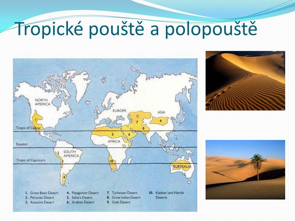 Tropické pouště a polopouště
