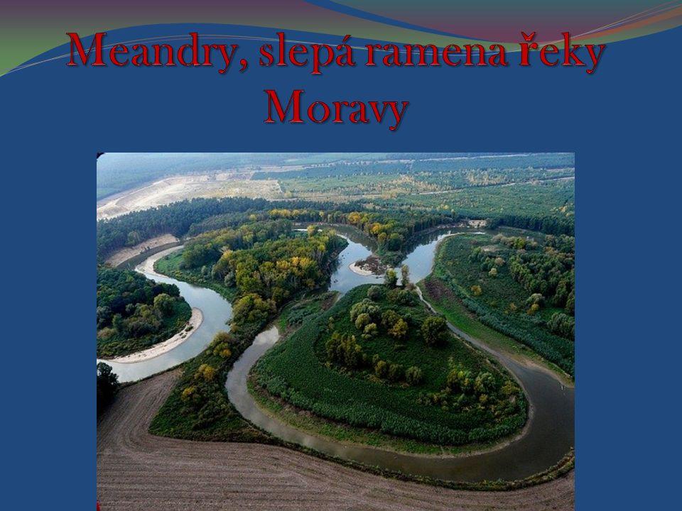 Meandr je zákrut řeky způsobený boční erozí – vymíláním břehů na jedné straně a usazováním na straně druhé.