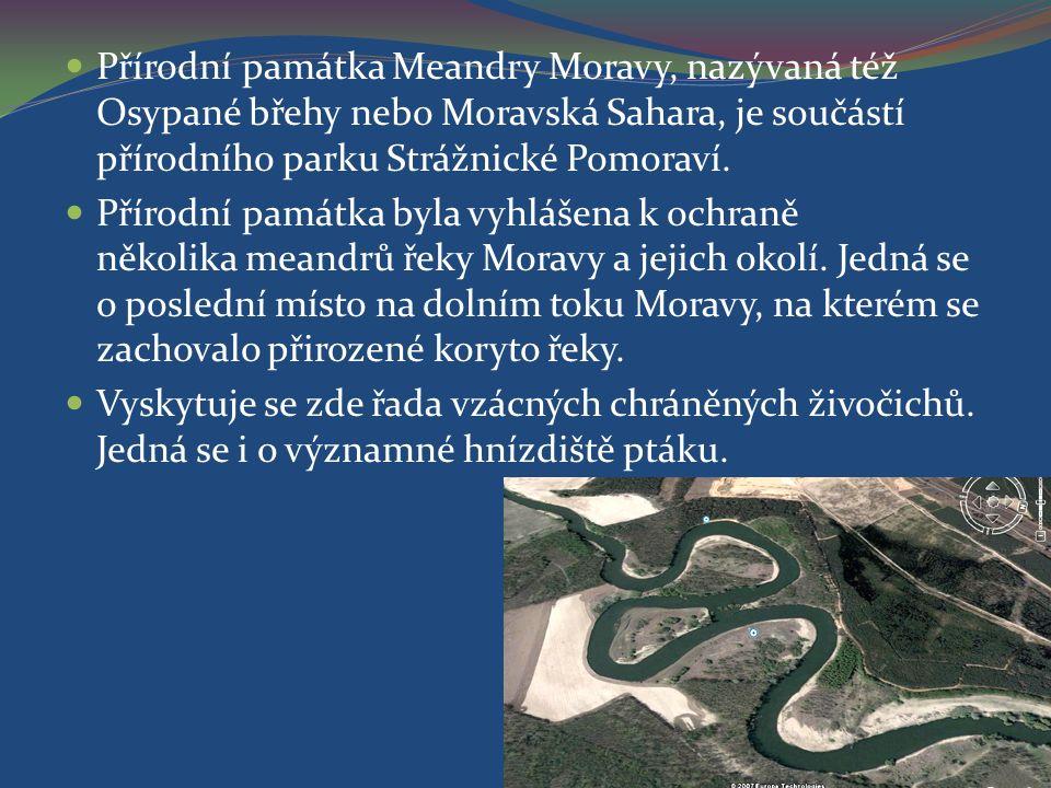 Přírodní památka Meandry Moravy, nazývaná též Osypané břehy nebo Moravská Sahara, je součástí přírodního parku Strážnické Pomoraví.