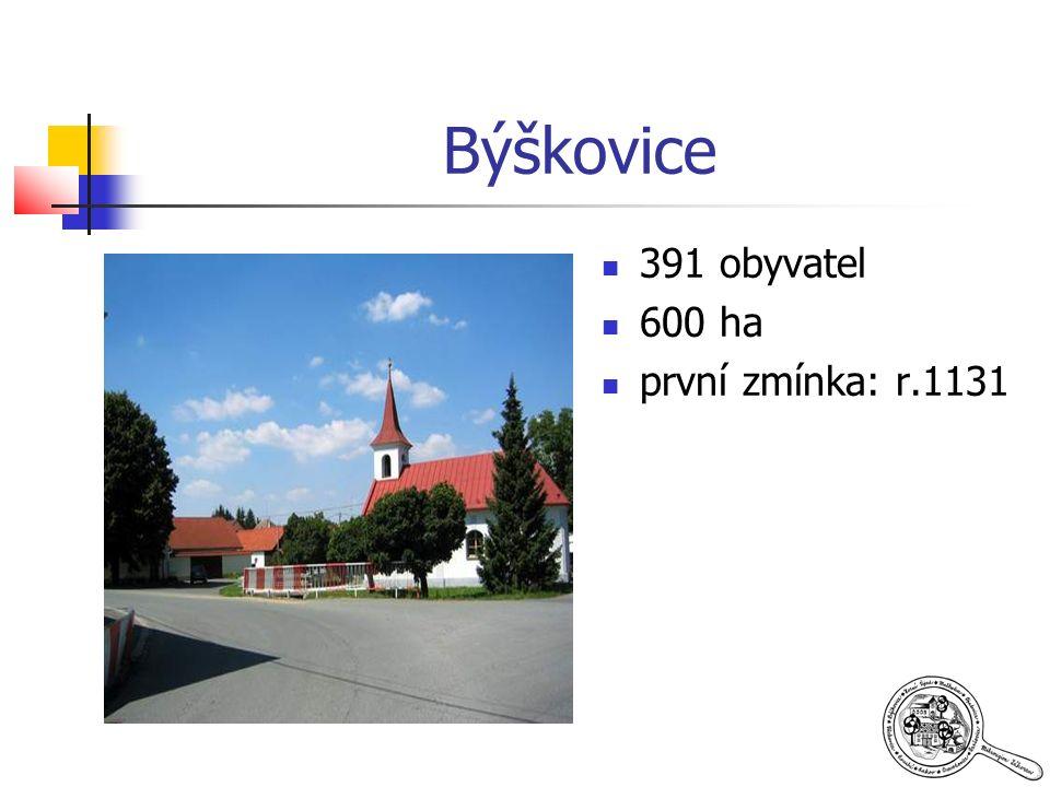 Býškovice 391 obyvatel 600 ha první zmínka: r.1131