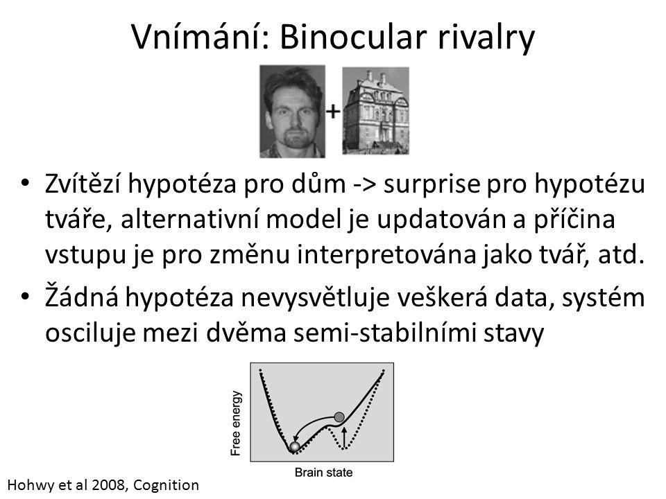 Vnímání: Binocular rivalry Zvítězí hypotéza pro dům -> surprise pro hypotézu tváře, alternativní model je updatován a příčina vstupu je pro změnu interpretována jako tvář, atd.