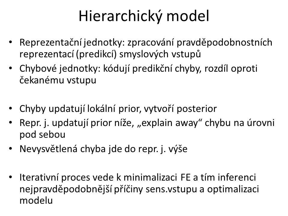 Hierarchický model Reprezentační jednotky: zpracování pravděpodobnostních reprezentací (predikcí) smyslových vstupů Chybové jednotky: kódují predikční chyby, rozdíl oproti čekanému vstupu Chyby updatují lokální prior, vytvoří posterior Repr.