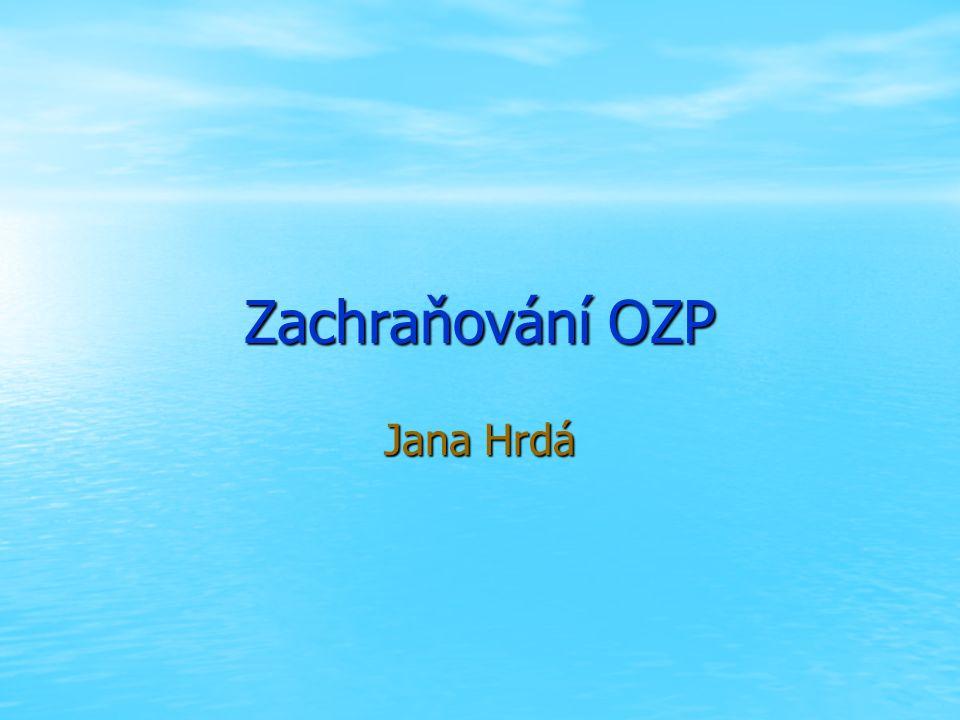 Zachraňování OZP Jana Hrdá