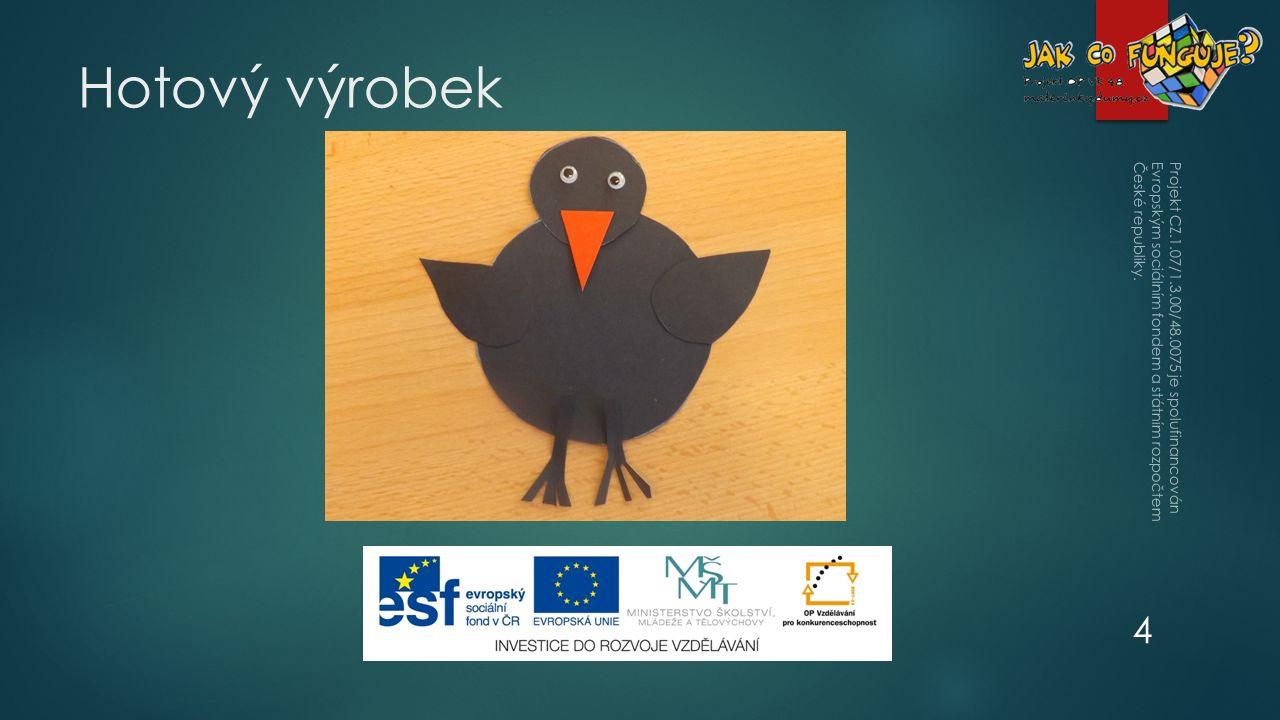 Hotový výrobek Projekt CZ.1.07/1.3.00/48.0075 je spolufinancován Evropským sociálním fondem a státním rozpočtem České republiky.