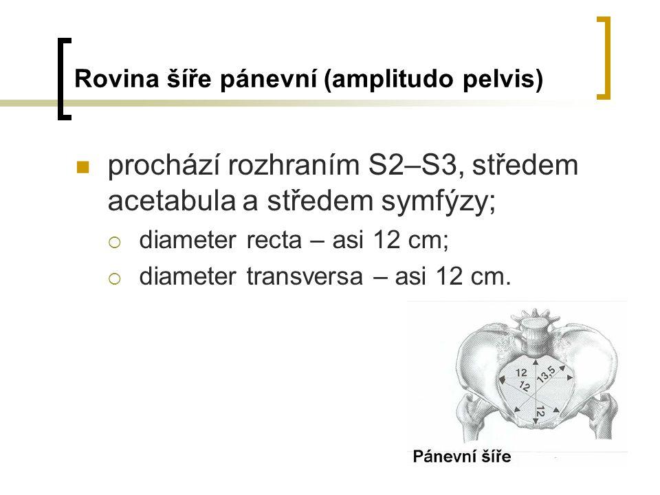 Rovina šíře pánevní (amplitudo pelvis) prochází rozhraním S2–S3, středem acetabula a středem symfýzy;  diameter recta – asi 12 cm;  diameter transversa – asi 12 cm.