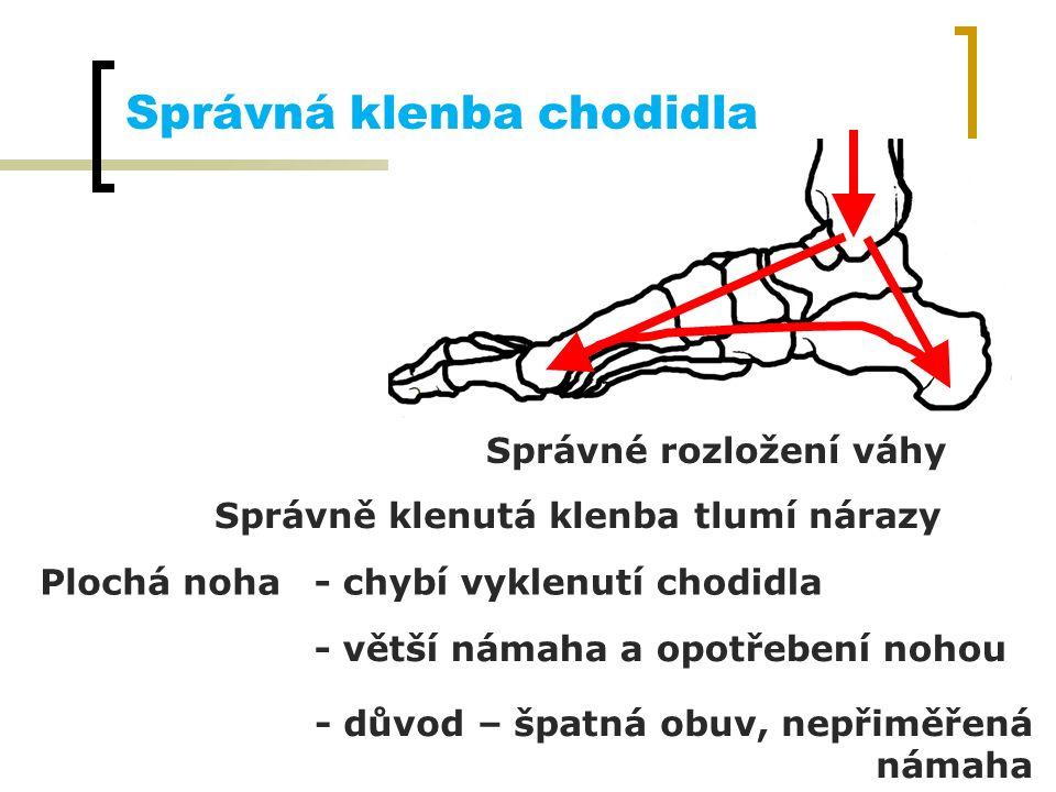 Správná klenba chodidla Správné rozložení váhy Správně klenutá klenba tlumí nárazy Plochá noha- chybí vyklenutí chodidla - větší námaha a opotřebení n