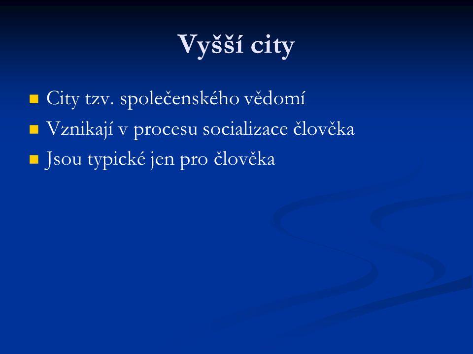 Vyšší city City tzv. společenského vědomí Vznikají v procesu socializace člověka Jsou typické jen pro člověka