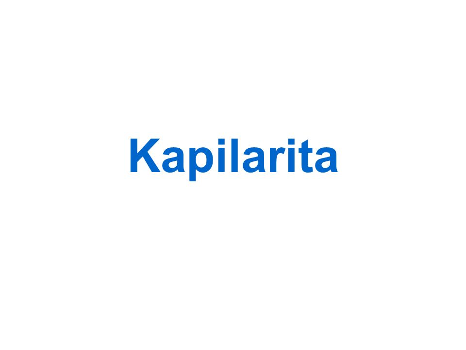 Kapilarita