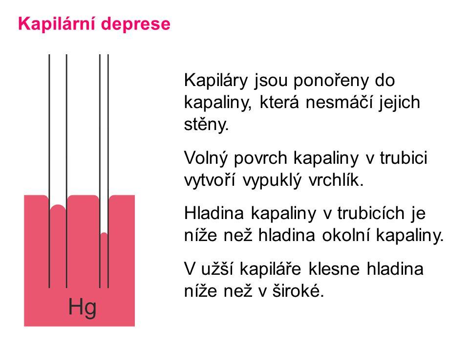 Kapilární deprese Kapiláry jsou ponořeny do kapaliny, která nesmáčí jejich stěny.