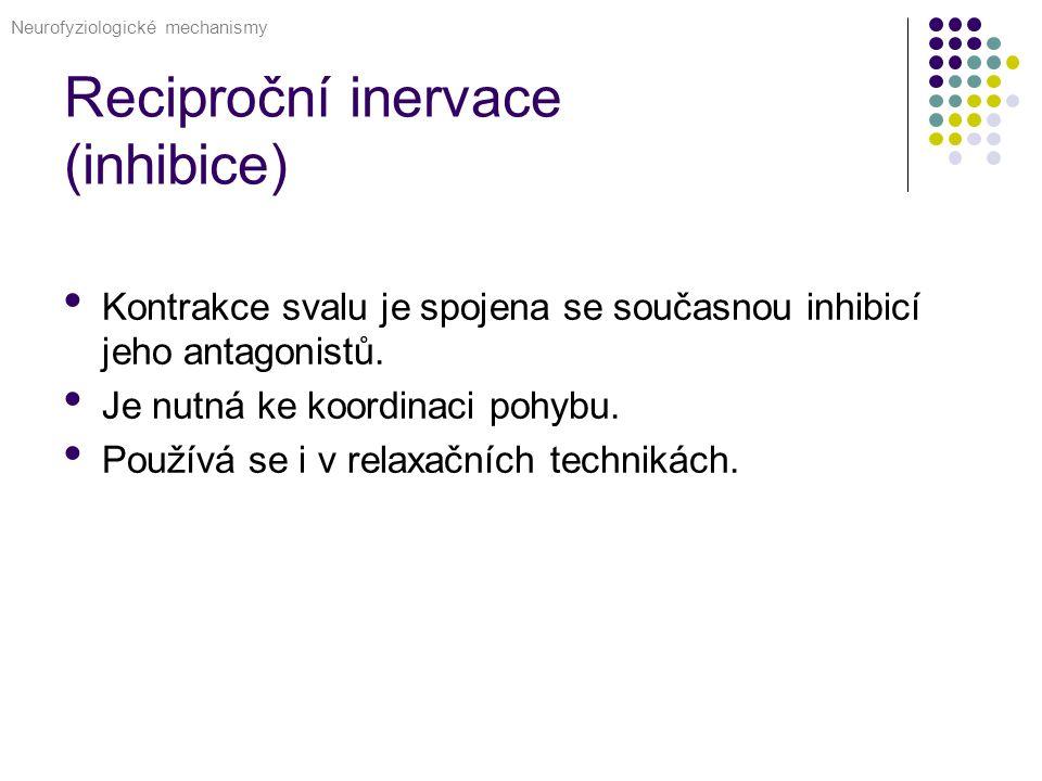 Reciproční inervace (inhibice) Kontrakce svalu je spojena se současnou inhibicí jeho antagonistů.