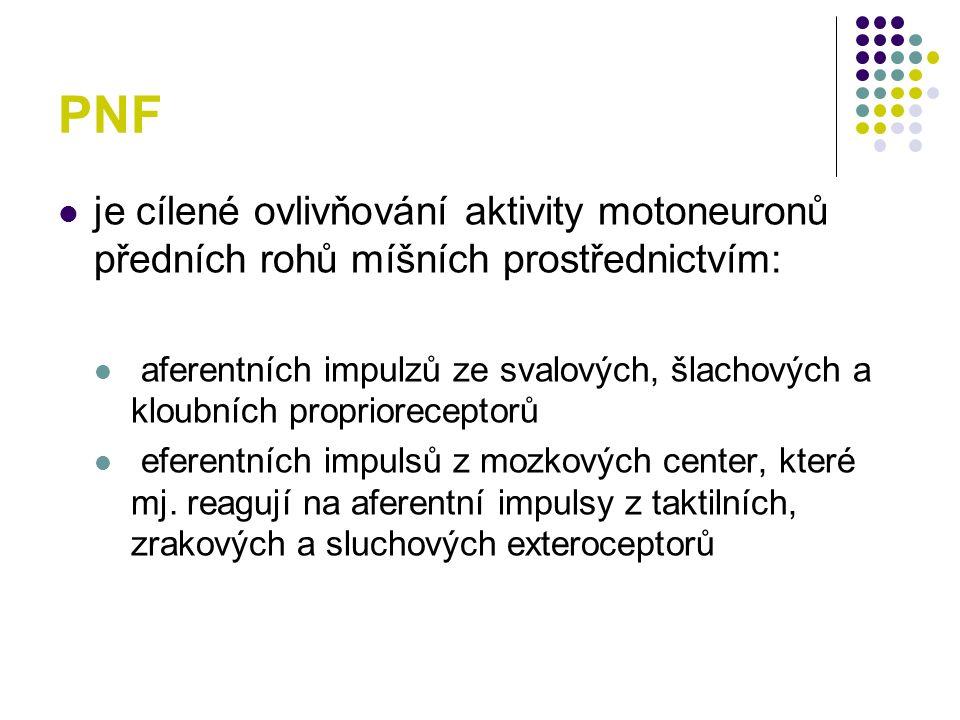 PNF je cílené ovlivňování aktivity motoneuronů předních rohů míšních prostřednictvím: aferentních impulzů ze svalových, šlachových a kloubních proprio