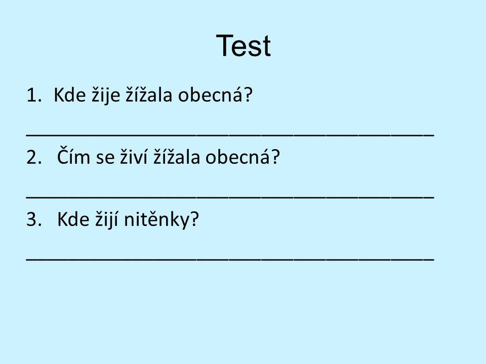 Test 1.Kde žije žížala obecná. ______________________________________ 2.