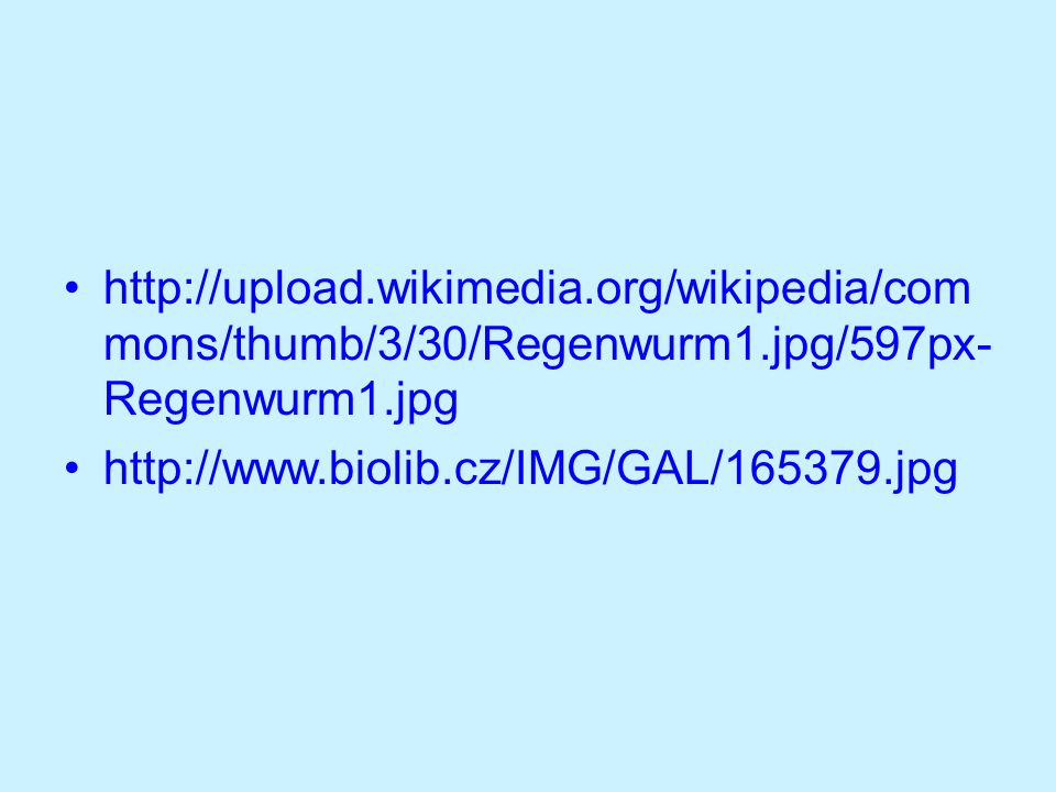 http://upload.wikimedia.org/wikipedia/com mons/thumb/3/30/Regenwurm1.jpg/597px- Regenwurm1.jpg http://www.biolib.cz/IMG/GAL/165379.jpg