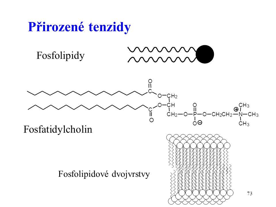 73 C CH 2 CH CH 2 O OP O O OCH 2 CH 2 O N CH 3 CH 3 CH 3 C O O Přirozené tenzidy Fosfatidylcholin Fosfolipidy Fosfolipidové dvojvrstvy