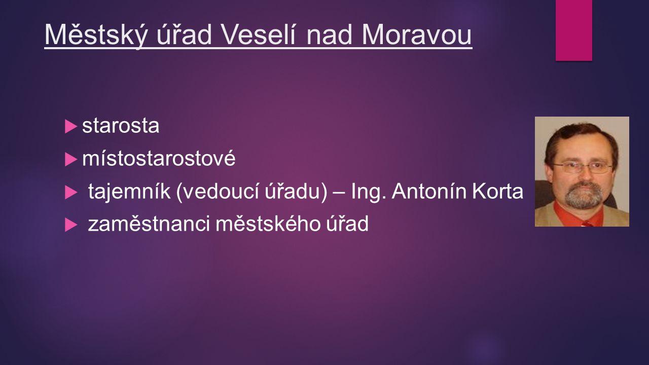 Městský úřad Veselí nad Moravou  starosta  místostarostové  tajemník (vedoucí úřadu) – Ing.