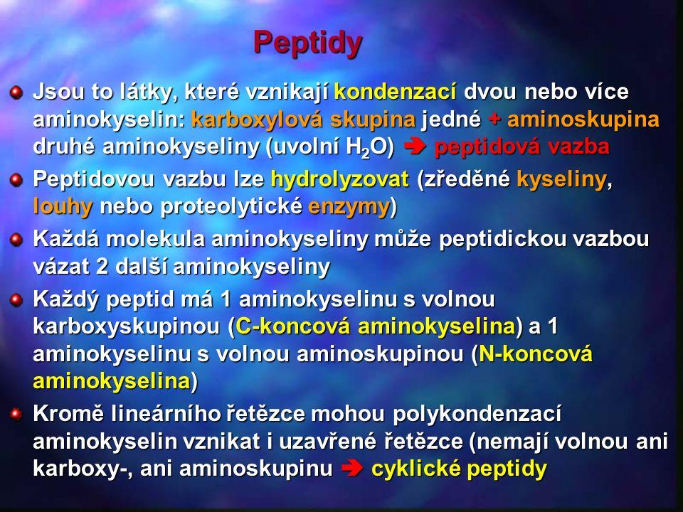 Peptidy Jsou to látky, které vznikají kondenzací dvou nebo více aminokyselin: karboxylová skupina jedné + aminoskupina druhé aminokyseliny (uvolní H 2 O)  peptidová vazba Peptidovou vazbu lze hydrolyzovat (zředěné kyseliny, louhy nebo proteolytické enzymy) Každá molekula aminokyseliny může peptidickou vazbou vázat 2 další aminokyseliny Každý peptid má 1 aminokyselinu s volnou karboxyskupinou (C-koncová aminokyselina) a 1 aminokyselinu s volnou aminoskupinou (N-koncová aminokyselina) Kromě lineárního řetězce mohou polykondenzací aminokyselin vznikat i uzavřené řetězce (nemají volnou ani karboxy-, ani aminoskupinu  cyklické peptidy