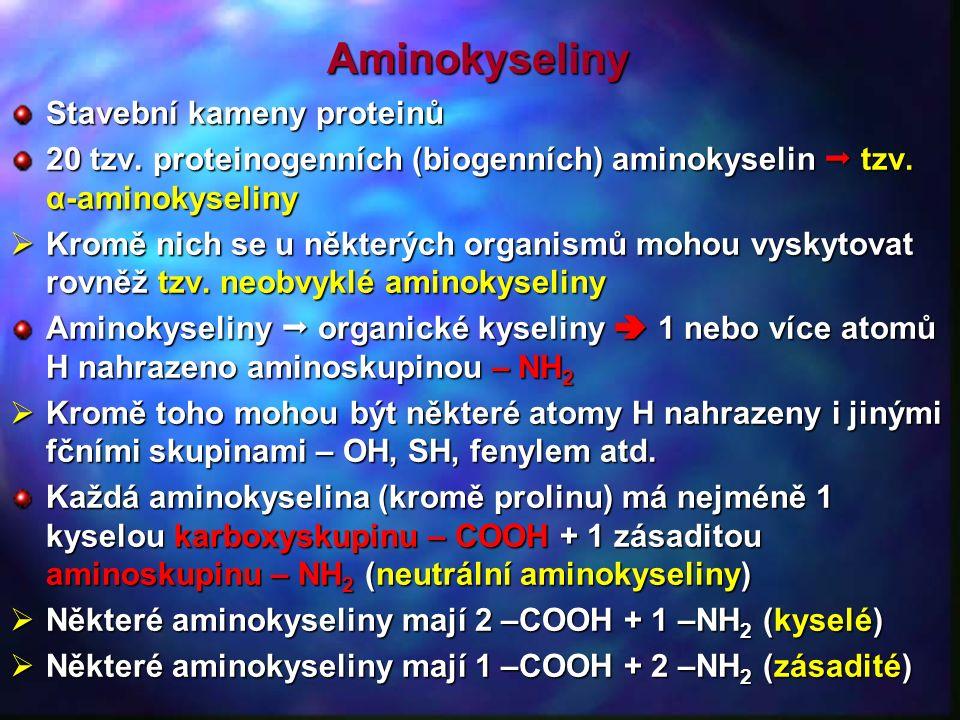 Aminokyseliny Stavební kameny proteinů 20 tzv.proteinogenních (biogenních) aminokyselin  tzv.