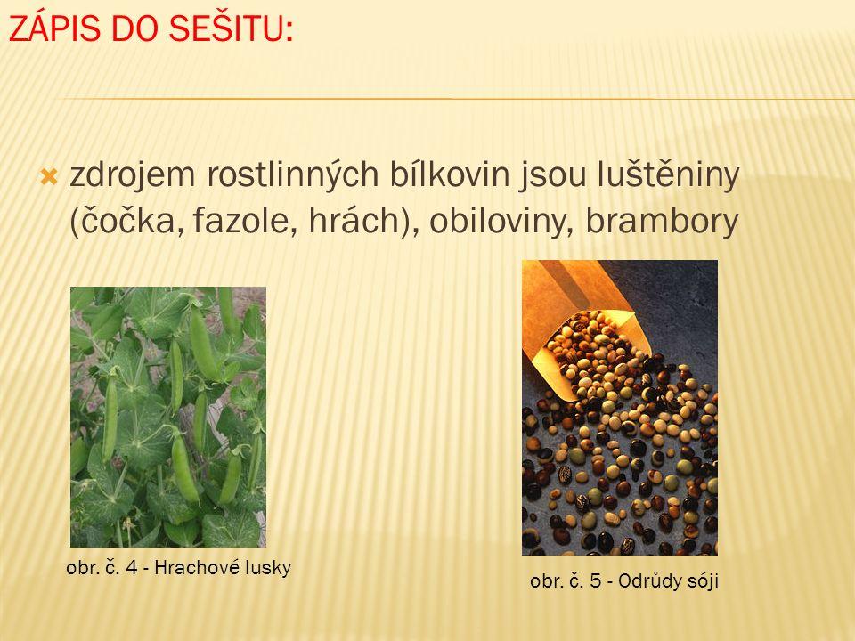  zdrojem rostlinných bílkovin jsou luštěniny (čočka, fazole, hrách), obiloviny, brambory ZÁPIS DO SEŠITU: obr.
