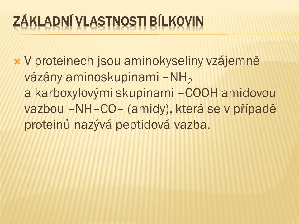  V proteinech jsou aminokyseliny vzájemně vázány aminoskupinami –NH 2 a karboxylovými skupinami –COOH amidovou vazbou –NH–CO– (amidy), která se v případě proteinů nazývá peptidová vazba.