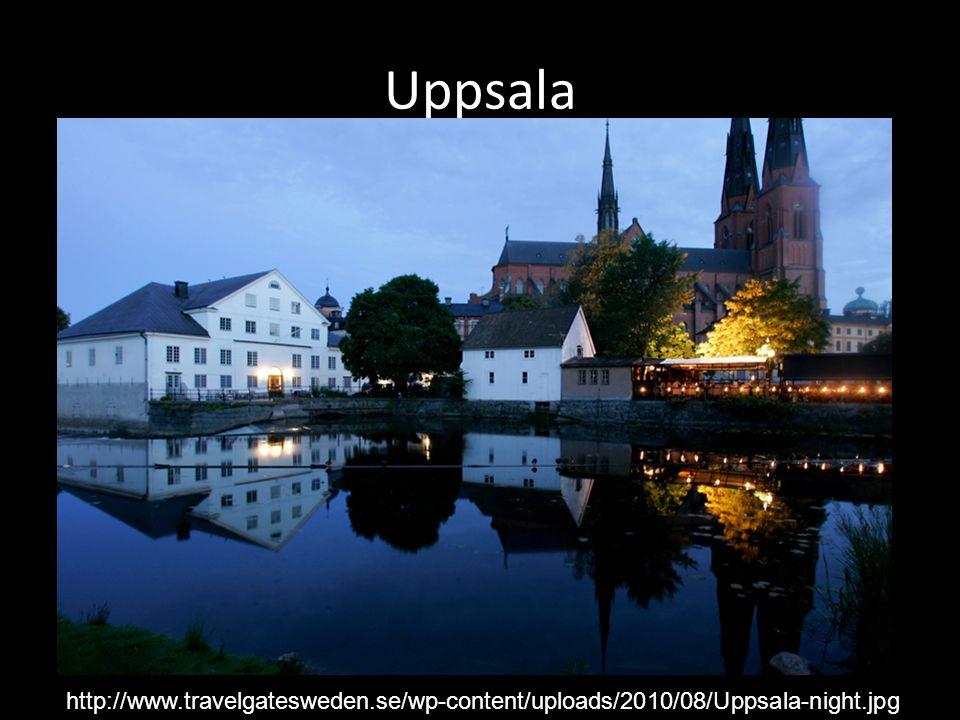Uppsala http://www.travelgatesweden.se/wp-content/uploads/2010/08/Uppsala-night.jpg