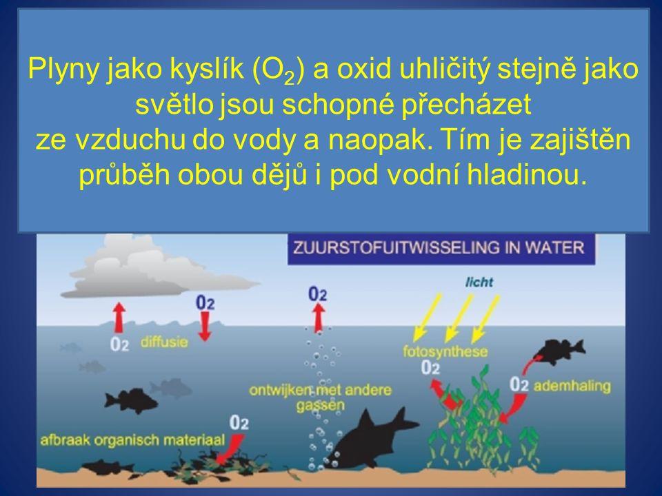 Plyny jako kyslík (O 2 ) a oxid uhličitý stejně jako světlo jsou schopné přecházet ze vzduchu do vody a naopak.