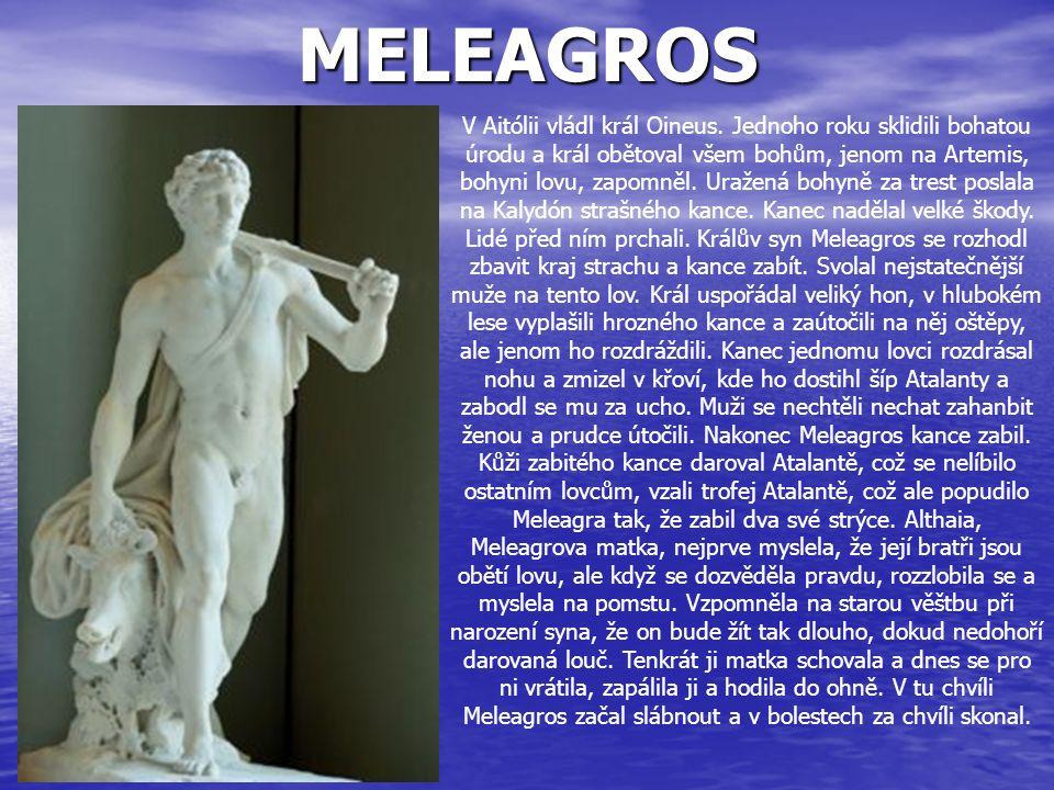 MELEAGROS V Aitólii vládl král Oineus. Jednoho roku sklidili bohatou úrodu a král obětoval všem bohům, jenom na Artemis, bohyni lovu, zapomněl. Uražen