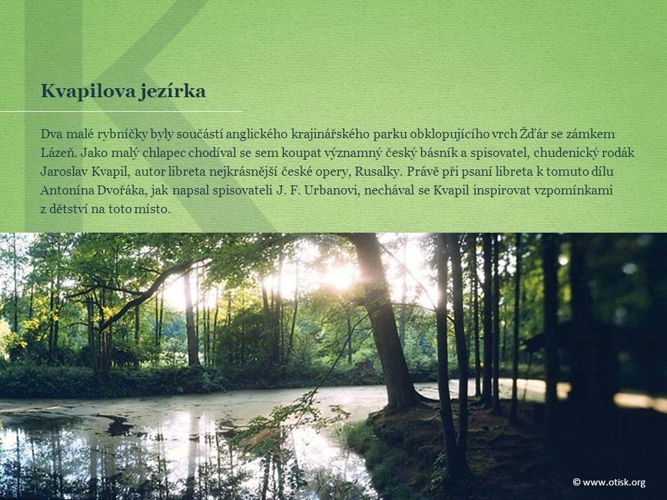 K Kvapilova jezírka Dva malé rybníčky byly součástí anglického krajinářského parku obklopujícího vrch Žďár se zámkem Lázeň.