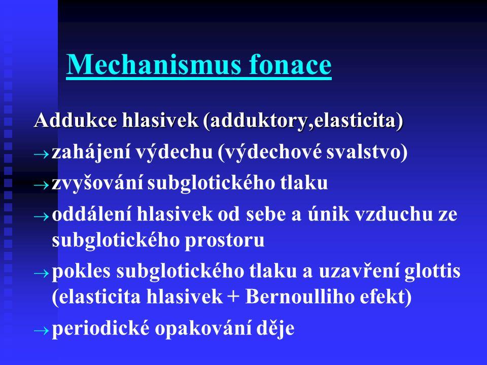 Mechanismus fonace Addukce hlasivek (adduktory,elasticita)   zahájení výdechu (výdechové svalstvo)   zvyšování subglotického tlaku   oddálení hl