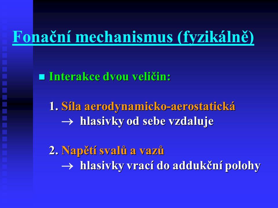 Fonační mechanismus (fyzikálně) Interakce dvou veličin: 1. Síla aerodynamicko-aerostatická hlasivky od sebe vzdaluje 2. Napětí svalů a vazů hlasivky v