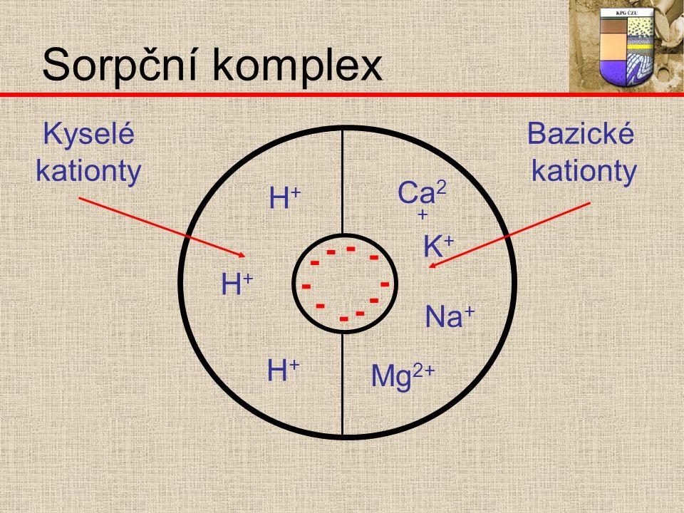 - - - - - - - - - - K+K+ Na + Mg 2+ Ca 2 + H+H+ H+H+ H+H+ Kyselé kationty Bazické kationty